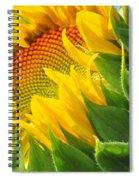 Sunflower Unfolding  Spiral Notebook