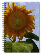 Sunflower With Busy Bees Spiral Notebook