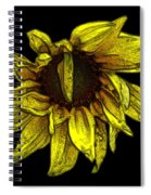 Sunflower With Contours Effect Spiral Notebook