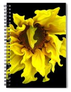 Sunflower With Curlicues Effect Spiral Notebook