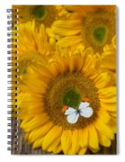 Sunflower With White Butterfly Spiral Notebook