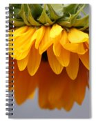 Sunflowers 6 Spiral Notebook