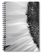 Sunflowers Beauty Black And White Spiral Notebook