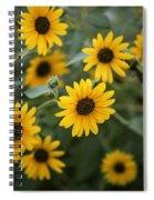 Sunflowers Bloom Spiral Notebook