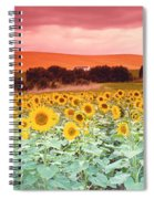 Sunflowers, Corbada, Spain Spiral Notebook