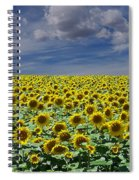 Sunflowers Forever Spiral Notebook