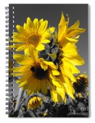 Yellow Selected Sunflowers Spiral Notebook