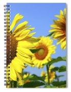 Sunflowers In Field Spiral Notebook