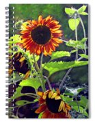 Sunflowers In The Park Spiral Notebook