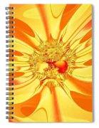 Sunglow Fractal Spiral Notebook