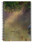 Sunglow Heron Spiral Notebook