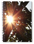 Sunhine And Raindrops Spiral Notebook