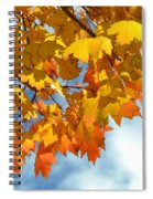 Sunlight And Shadow - Autumn Leaves Two Spiral Notebook
