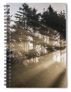 Sunlight Breaks Through The Fog Spiral Notebook