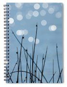 Sunlight Dances Spiral Notebook