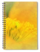 Sunlight On Poppy Abstract Spiral Notebook