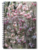 Sunlight On Saucer Magnolias Spiral Notebook