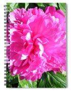 Sunlight On The Peony Spiral Notebook
