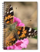 Sunlight On Wings Spiral Notebook