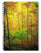 Sunlights Warmth Spiral Notebook