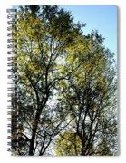 Sunlit 14-1 Spiral Notebook