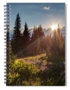 Sunlit Flower Meadows Spiral Notebook