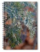 Sunlit Herb Spiral Notebook
