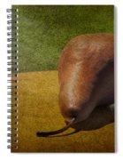 Sunlit Pear Spiral Notebook