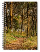 Sunlit Woods In Late Autumn Spiral Notebook