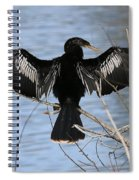 Sunning Anhinga Spiral Notebook