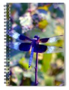 Sunning Dragonfly Spiral Notebook