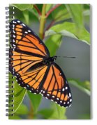 Sunning Royalty II Spiral Notebook