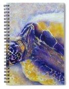 Sunning Turtle Spiral Notebook
