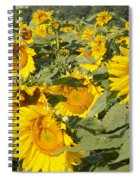Sunning With Friends Spiral Notebook
