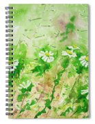 Sunny Daisies Spiral Notebook
