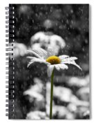 Sunny Disposition Despite Showers Spiral Notebook