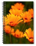 Sunny Floral Spiral Notebook