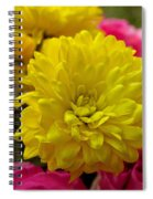 Sunny Flowers Spiral Notebook