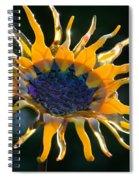 Sunny Glass Spiral Notebook