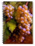 Sunny Grapes - Edition 1 Spiral Notebook