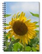 Sunny July 2013 Spiral Notebook