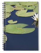 Sunny Lily Pond Spiral Notebook
