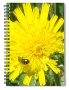 Sunny Lunch Spiral Notebook