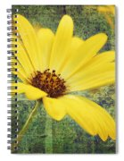 Sunny Moment Spiral Notebook