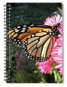 Sunny Side Monarch Spiral Notebook