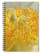 Sunny Side Peony Spiral Notebook