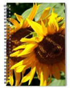 Sunny Sisters Spiral Notebook