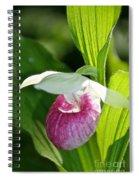 Sunny Slipper Spiral Notebook