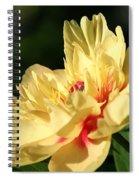 Sunny Summer Spiral Notebook