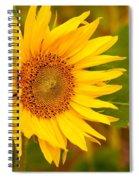 Sunny Sunflower Fields Spiral Notebook